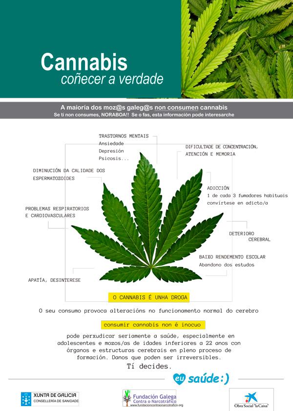 Información e prevención de adiccións - Cannabis